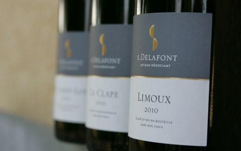 S.Delafont_profile pic