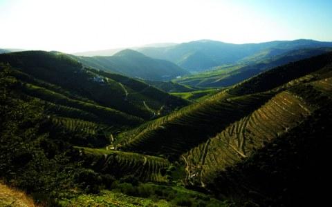 Vue_Douro_Profil Pic02