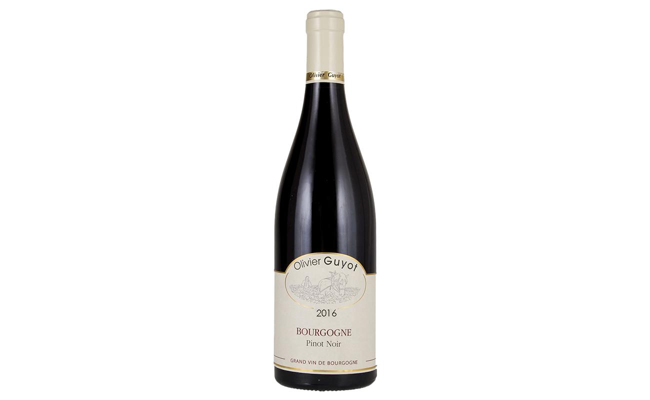 Bourgogne PN 2016