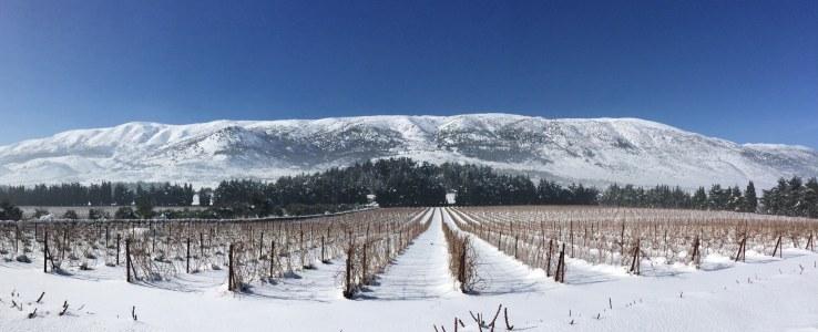 Chateau Kefraya snow panoramic – cropped